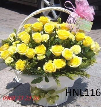 hoa ngay le  hnl116