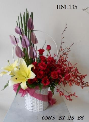 hoa ngay le  hnl135