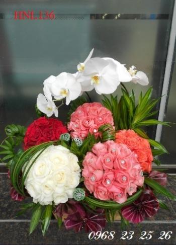 hoa ngay le  hnl136